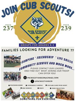Boy Scout May 26
