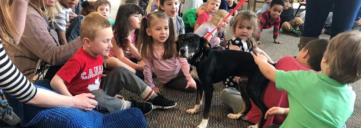 Anderson Pet Shelter Visit